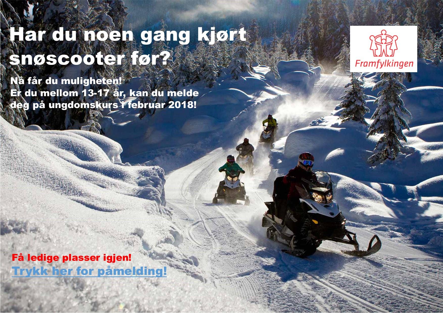 Viser en gruppe som kjører snøscootere i strålende vintervær