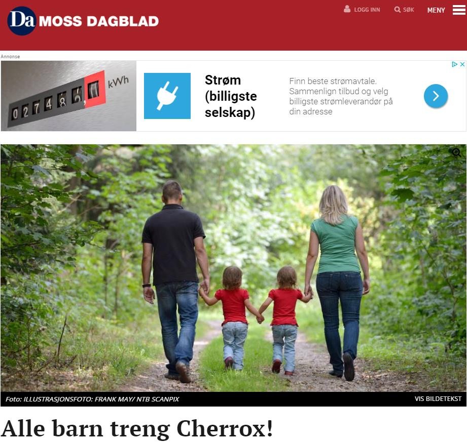 bilde av en nettside som viser en artikkel om barnefattigdom