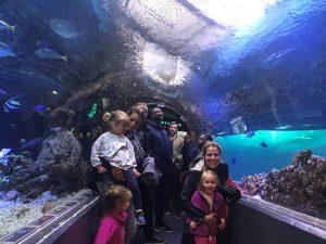en gruppe mennesker som står inne i en glasstunnel inne i den største fisketanken på akvariet i Bergen