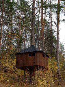 bilde av ei brun hytte bygget i et tre